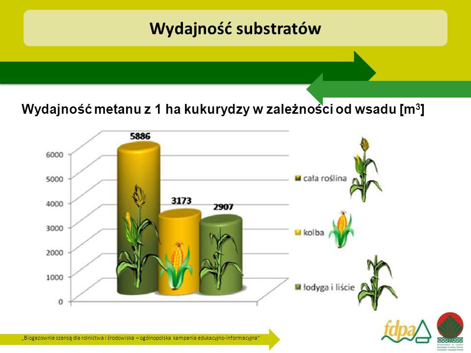 Wydajność substratów Wydajność metanu z 1 ha kukurydzy w zależności od wsadu [m3]